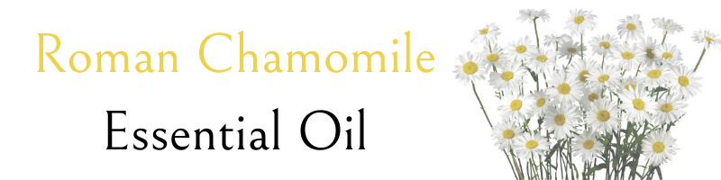chamomile-essential-oil-text