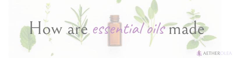 How are essential oils made