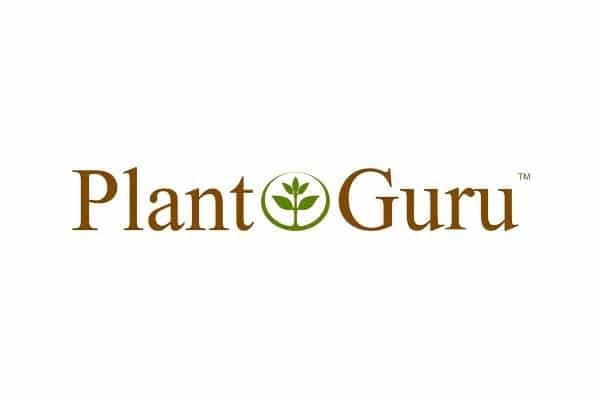 PLANT GURU Company Brand Logo